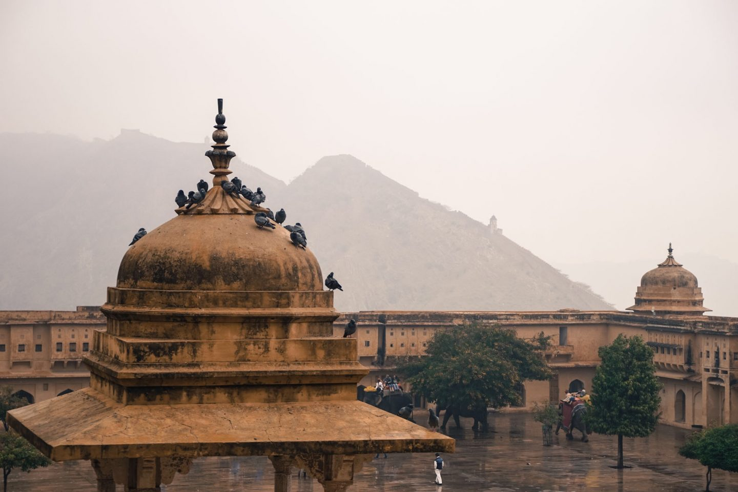 Jaipur_India_Amber_Fort_2_What_to _do_in_Jaipur